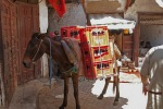 maroko103