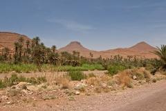 maroko120