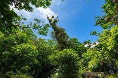 nikaragua109
